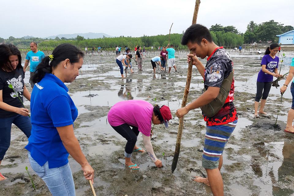 LGU Employees' Mangrove Tree Planting Activity